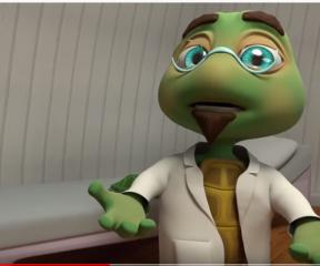 Akıllı Tavşan Momo Hasta Yavru Kaplumbağa