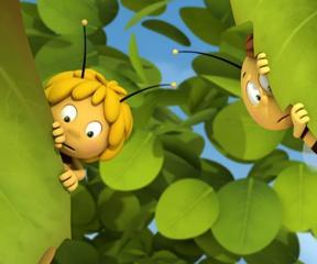 Arı Maya Kurtarıcı Maya