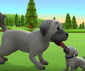 Niloya Çoban Köpeği